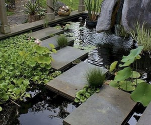 garden, calm, and plants image