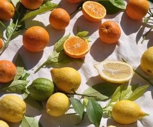 orange, summer, and lemon image