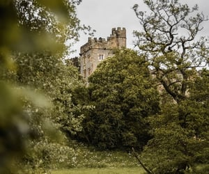 castle, witchcraft, and gardencore image
