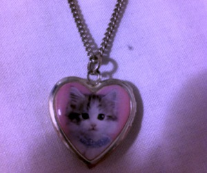 cat, necklace, and heart image