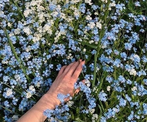 aesthetic, beauty, and blue image