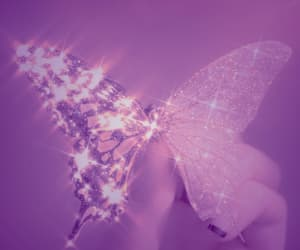 aesthetic, butterfly, and sparkle image