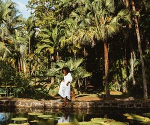 jungle, paradisiac, and africa image