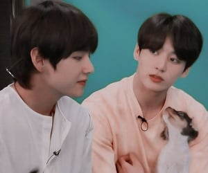 puppy, cute, and jungkook image
