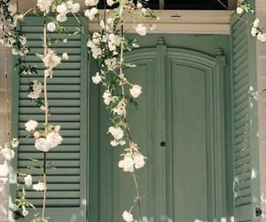 flowers, aesthetic, and door image