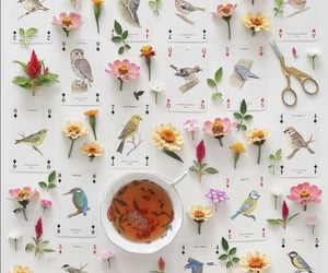 birds, cup of tea, and tea image
