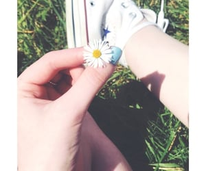 converse, daisy, and spring image