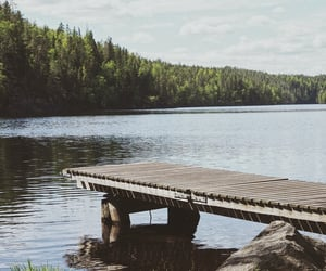finland, national park, and summer image
