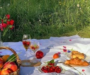 rhônde-alpes, france camellia.dreamer