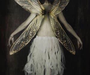 fairy, black, and fae image