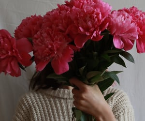 flowers, peonies, and photo ideas image
