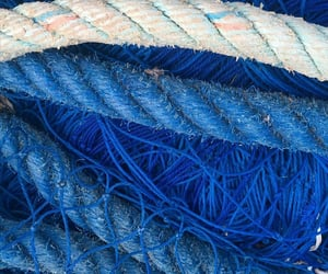blue, netting, and siren image