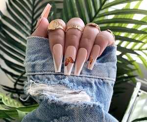 butterfly and nails image