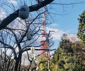 japan, tokyo, and tower image