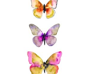 aesthetic, art, and butterflies image