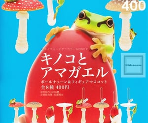 frog and japanese image