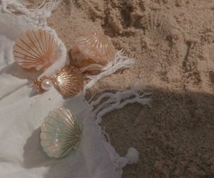 beach, shell, and aesthetic image