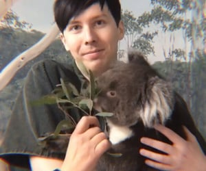 green, amazingphil, and phil lester image