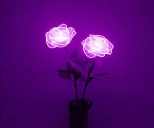 attractive, nice, and purple image