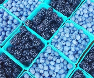 blue, fruit, and food image
