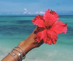 flowers, beach, and sea image