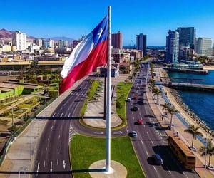 avenue, beautiful, and city image