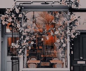 flowers, cafe, and city image