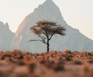 desert, mountains, and namibia image