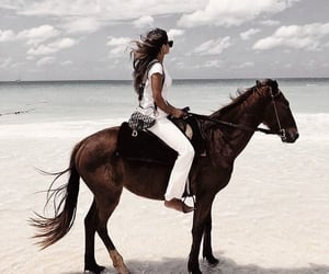 animals, horseriding, and beach image