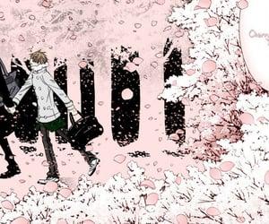 cherry blossom, manga, and sekaiichi hatsukoi image