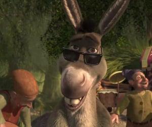 sherk, burro, and memes image
