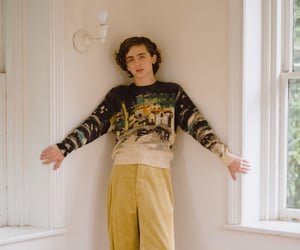 timothee chalamet, boy, and timothee image