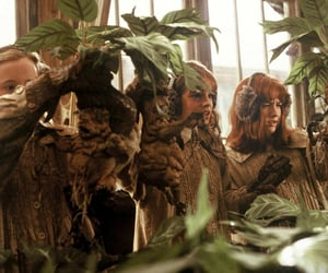 green, harry potter, and herbology image