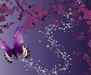 butterflies, butterfly, and magical image