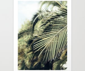 botanical, palm, and home decor image