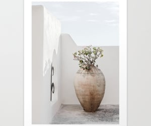 flower, photography, and vase image