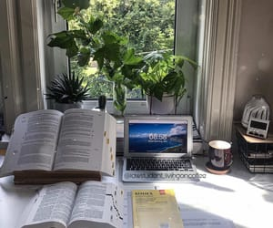 studyblr, note taking, and study mood image