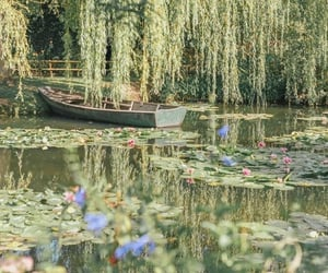 beautiful, boat, and lily pads image