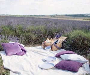 aesthetic, picnic, and pillows image