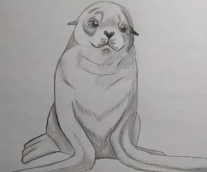 seal, art, and dibujo image
