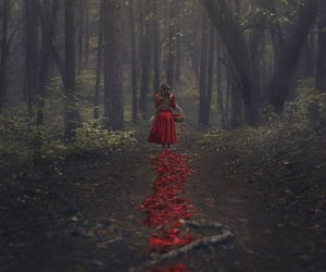 red, forest, and fantasy image