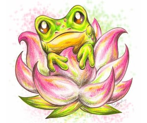 art, frogs, and nature image