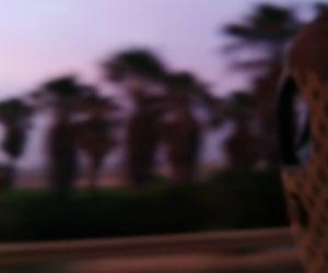 bus, crete, and road image