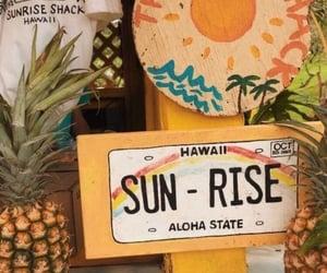 summer, hawaii, and theme image