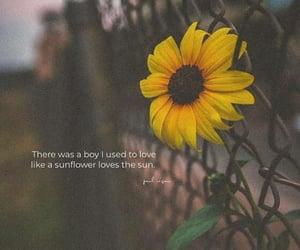 boy, girl, and like image