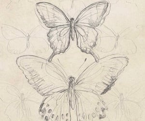 butterfly, pencil, and theme image