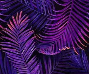 background, color, and decor image