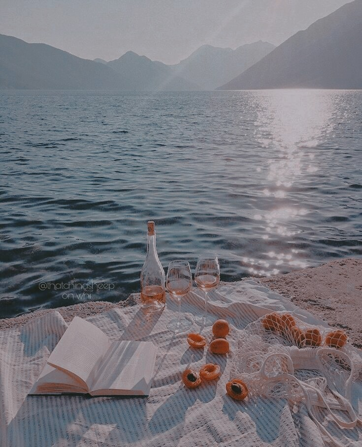 summer, book, and food image