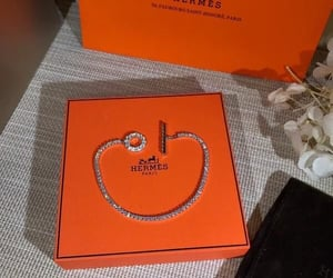 beautiful, chic, and hermes image