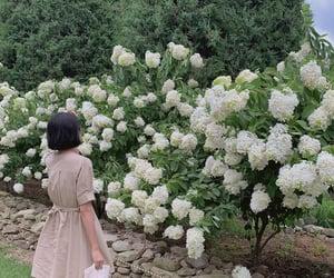 garden, girl, and green image
